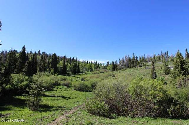 Tbd County Road 111, Kremmling, CO 80459 (MLS #21-826) :: The Real Estate Company