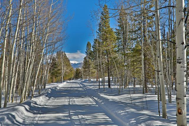 20434 Gcr 50, Fraser, CO 80442 (MLS #18-1649) :: The Real Estate Company