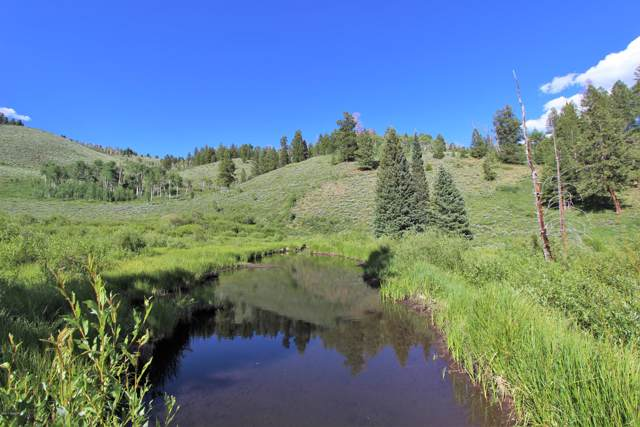 11394 County Rd 11, Kremmling, CO 80459 (MLS #19-101) :: The Real Estate Company