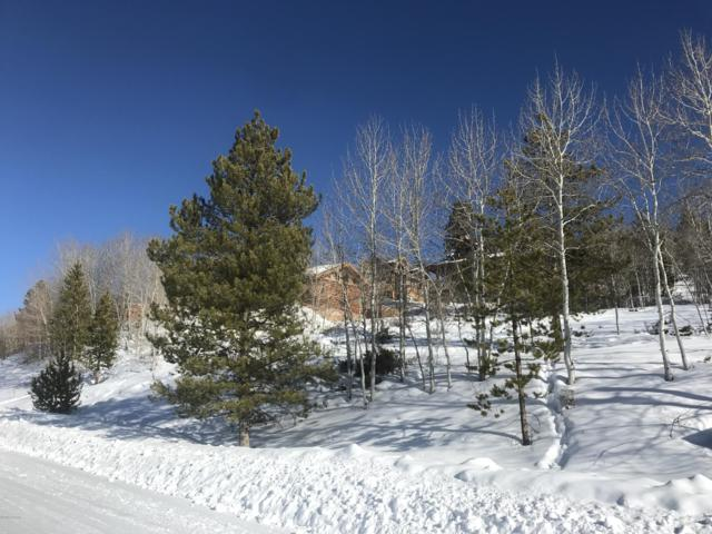 136 Gcr 8990/Bighorn Court, Granby, CO 80446 (MLS #19-117) :: The Real Estate Company