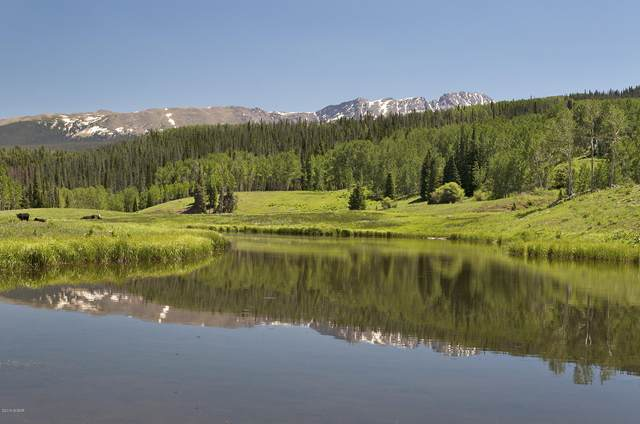 2102 Upper Mesa Trail, Silverthorne, CO 80498 (MLS #19-325) :: The Real Estate Company