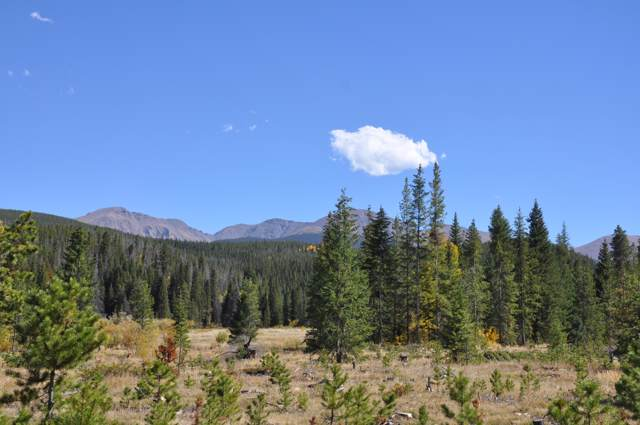 2 Roam Way, Winter Park, CO 80482 (MLS #19-855) :: The Real Estate Company