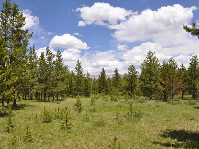 1104 Moose Run Ln Aka Gcr 5002, Fraser, CO 80442 (MLS #18-797) :: The Real Estate Company