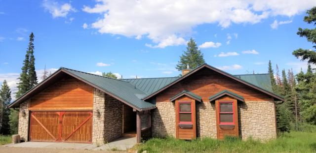 295 Blue Spruce Road, Silverthorne, CO 80498 (MLS #19-498) :: The Real Estate Company