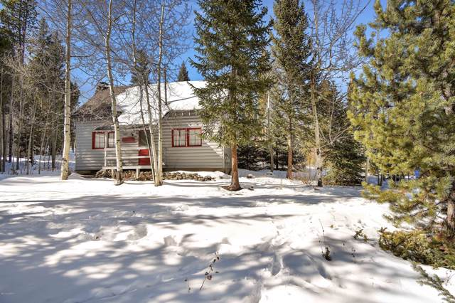237 Lions Gate, Winter Park, CO 80482 (MLS #19-769) :: The Real Estate Company