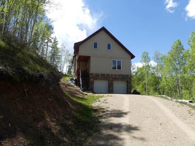 384 Gcr 412, Grand Lake, CO 80447 (MLS #19-795) :: The Real Estate Company