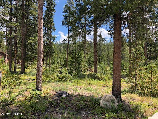 866 Gcr 464, Grand Lake, CO 80447 (MLS #20-1038) :: The Real Estate Company