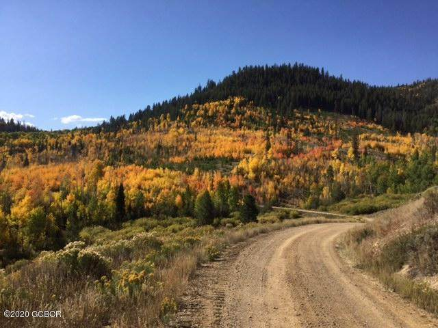 1960 County Rd 57, Granby, CO 80446 (MLS #20-1312) :: The Real Estate Company