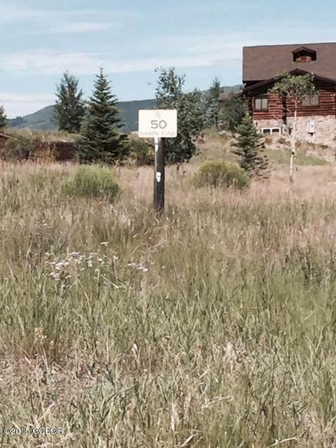 741 Saddle Ridge Circle - Photo 1