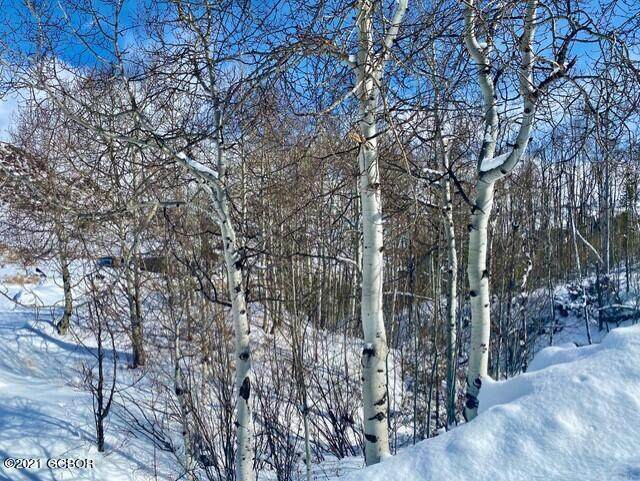 Lots 1-5 Gcr 20, Hot Sulphur Springs, CO 80451 (MLS #21-239) :: The Real Estate Company