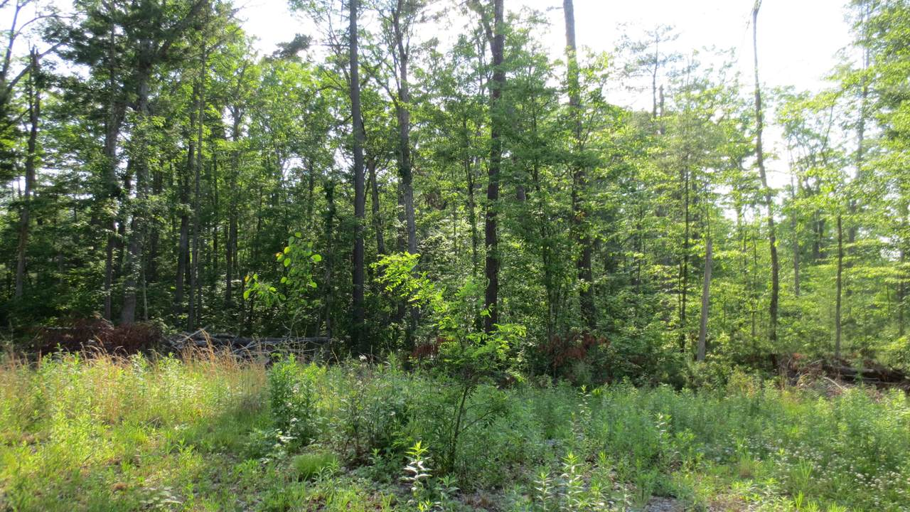Lot 28 Woodhaven Subdivision - Photo 1