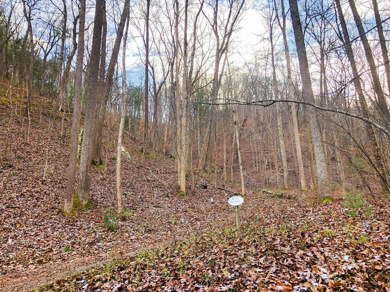 701 Oak Hollow - Photo 1
