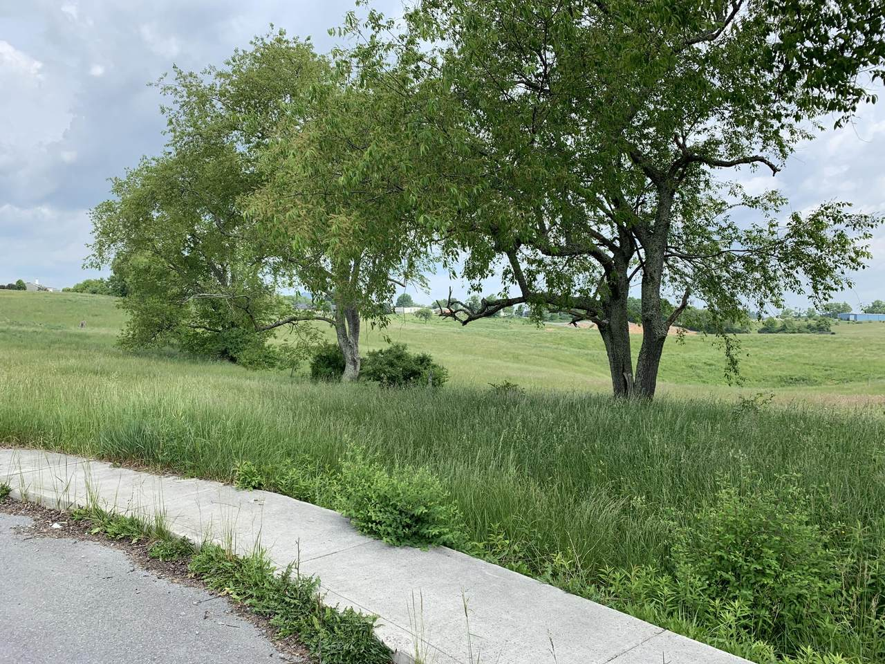 Northridge - Photo 1