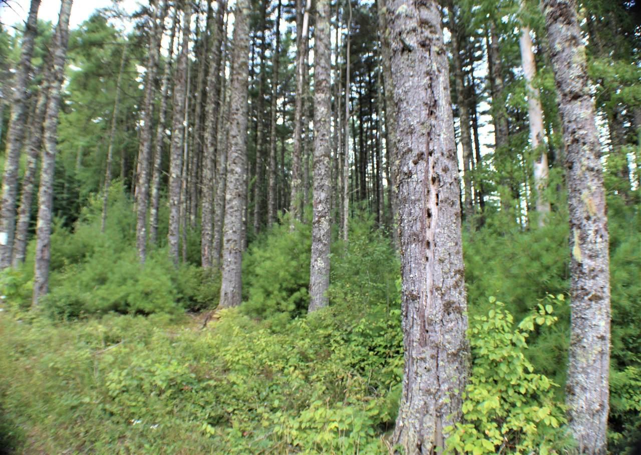 Beaver Creek Retreat Road - Photo 1