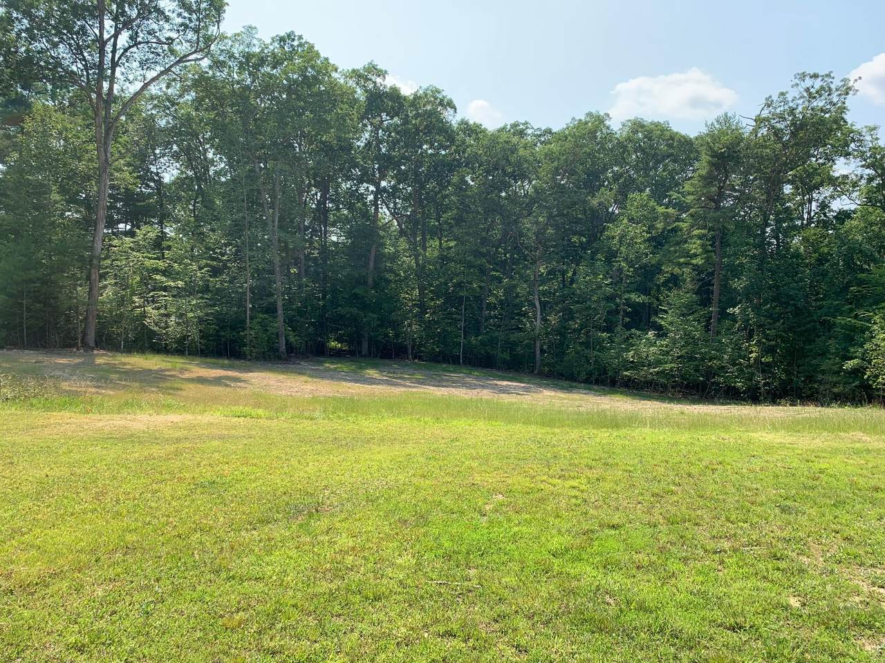 Lot 30 Woodhaven Dr - Photo 1