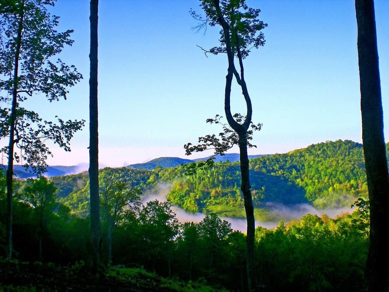 1013 Sunset Mountain Village - Photo 1