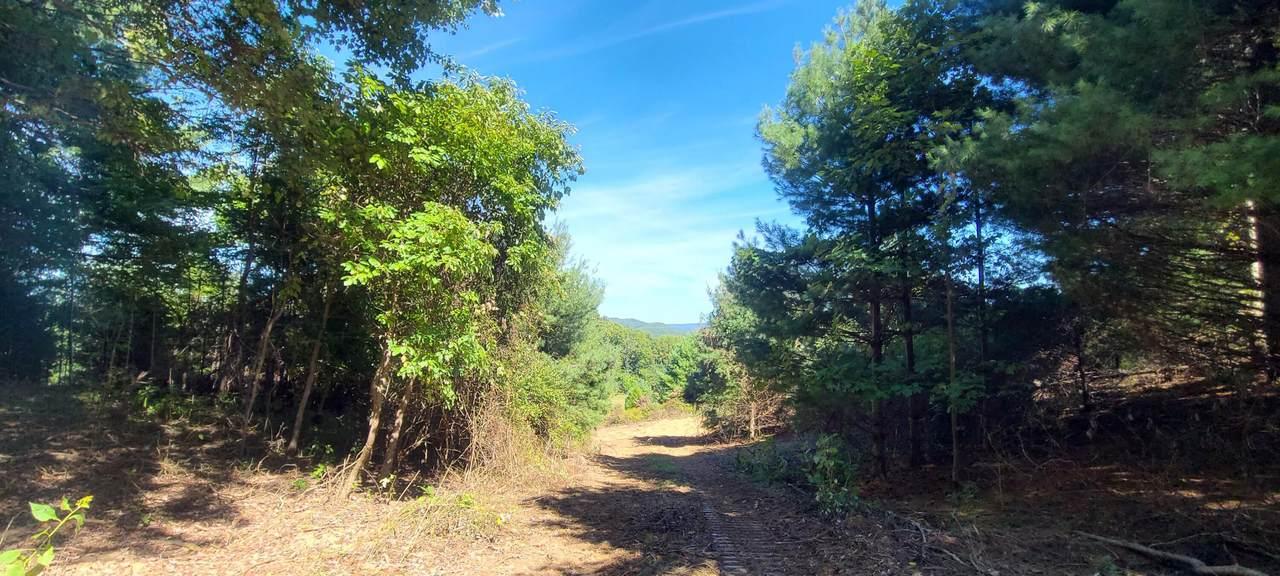 1 Bluestone River Road - Photo 1
