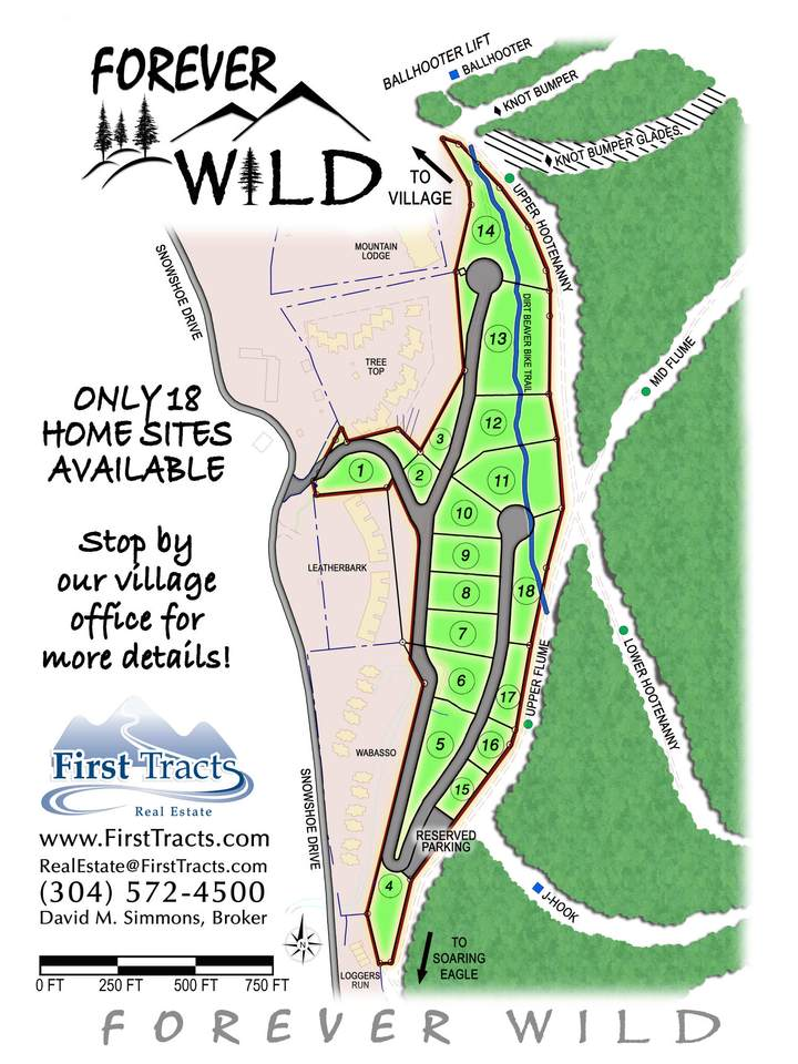 Lot 9 Forever Wild - Photo 1