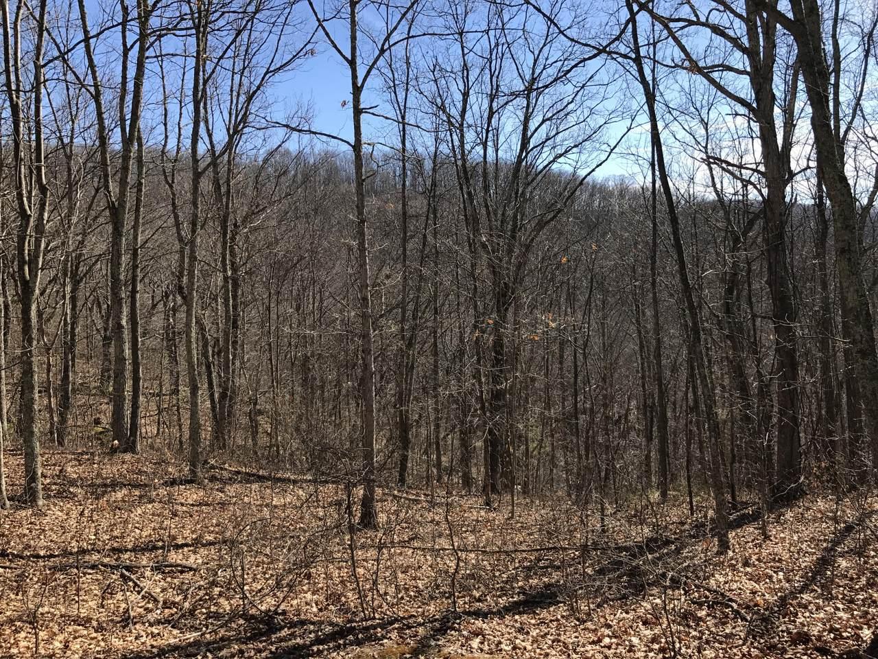 Lot 39 Wildwood Ridge, - Photo 1