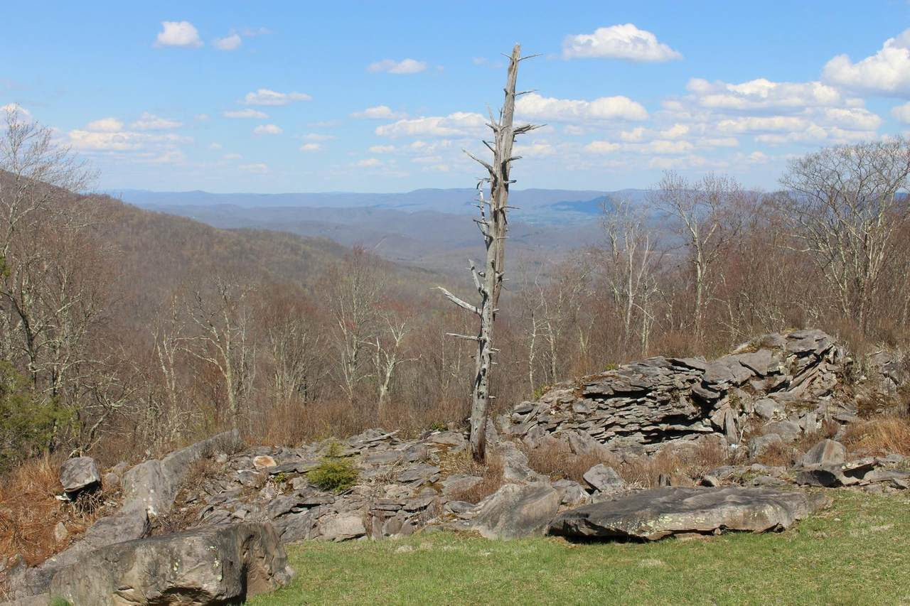 1552 Hunter's Ridge Road - Photo 1