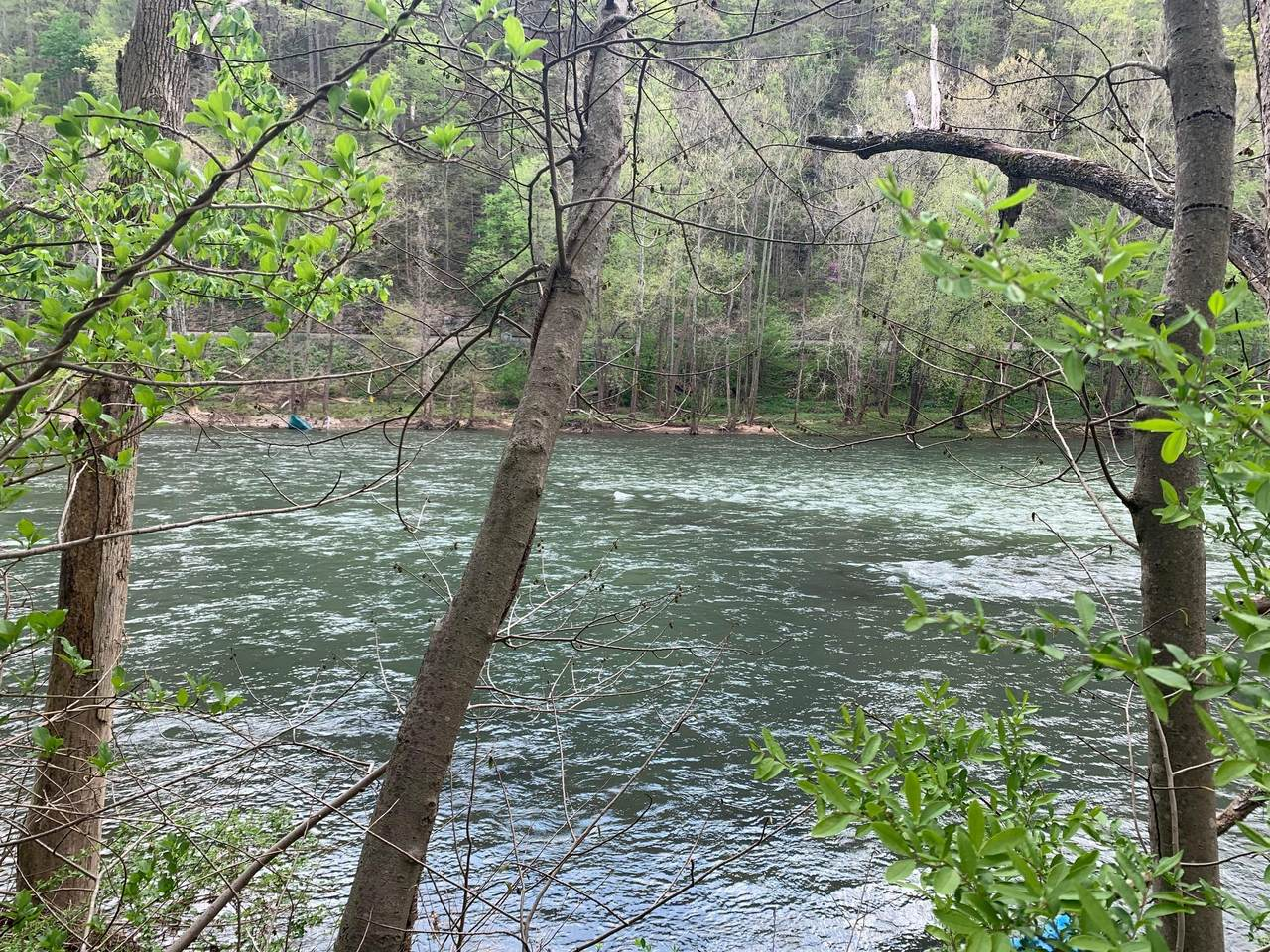 Lot 13 Fort Springs Rd - Photo 1