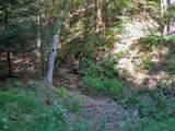 810 Sugar Creek Hollow - Photo 2