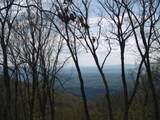 712 Summit Village Trail - Photo 10
