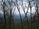 712 Summit Village Trail - Photo 11