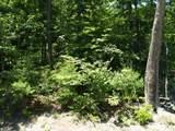 763 Bear Cub Trail - Photo 4