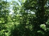 763 Bear Cub Trail - Photo 5