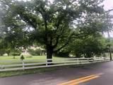 894 Big Draft Road - Photo 4