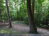 1205 Black Bear Trail - Photo 22