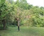 265 Huntersville Cemetery Rd - Photo 8