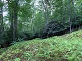 Lot 7 & 8 Barefoot Woods Ln -River Ridge - Photo 12