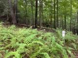 Lot 7 & 8 Barefoot Woods Ln -River Ridge - Photo 7