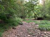 Lot 7 & 8 Barefoot Woods Ln -River Ridge - Photo 9
