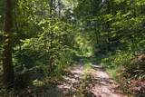 3078 Little Wolf Creek Rd - Photo 84