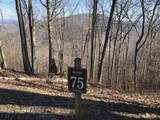 Lot 75 White Rock Trail - Photo 1