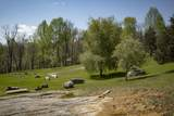 762 Rich Hollow Road - Photo 107