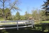 4075 Browns Creek Rd - Photo 9