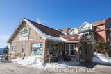 75 Mountain Lodge Lane - Photo 28