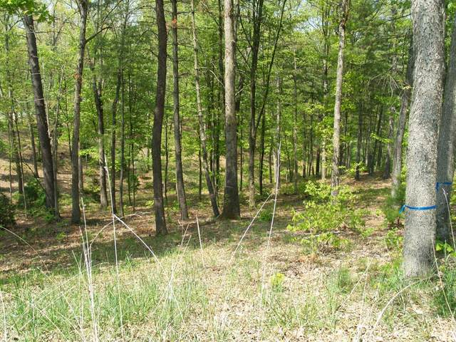 278 Deer Wood Circle, White Sulphur Springs, WV 24986 (MLS #14-441) :: Greenbrier Real Estate Service