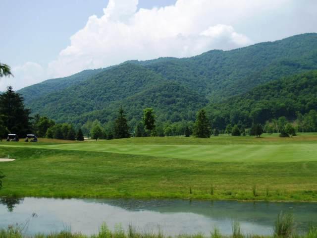 452 Sam Snead Dr., White Sulphur Springs, WV 24986 (MLS #17-470) :: Greenbrier Real Estate Service