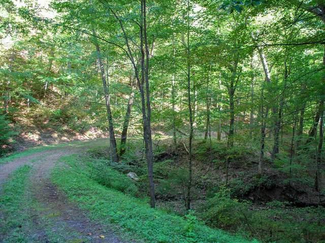 810 Sugar Creek Hollow, White Sulphur Springs, WV 24986 (MLS #17-987) :: Greenbrier Real Estate Service