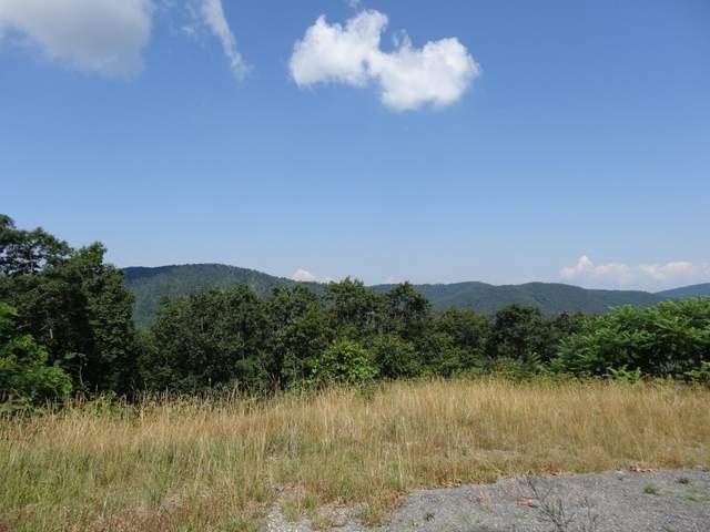Katy Drive, White Sulphur Springs, WV 24986 (MLS #20-118) :: Greenbrier Real Estate Service