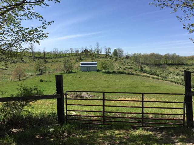 Charles Boothe/ Hatfield Ln, SINKS GROVE, WV 24976 (MLS #20-1304) :: Greenbrier Real Estate Service