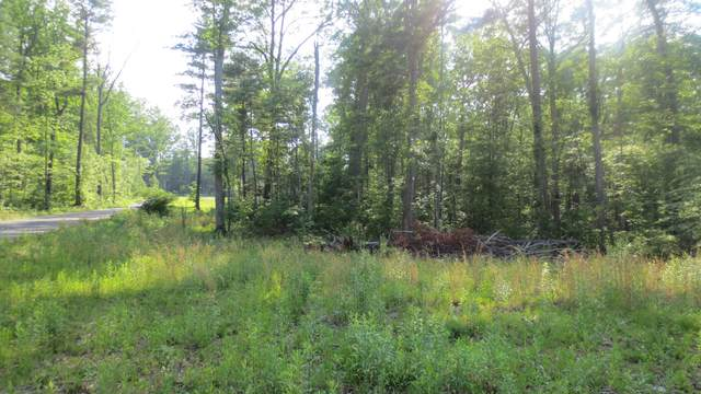 Lot 22 Woodhaven Subdivision, LEWISBURG, WV 24901 (MLS #20-1389) :: Greenbrier Real Estate Service
