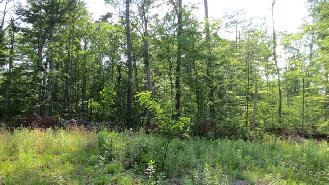 Lot 28 Woodhaven Subdivision, LEWISBURG, WV 24901 (MLS #20-1390) :: Greenbrier Real Estate Service