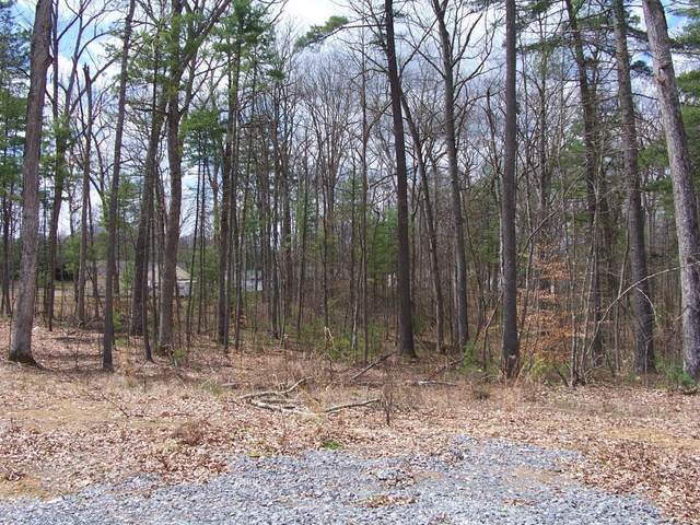 Lot 24 Woodhaven Subdivision, LEWISBURG, WV 24901 (MLS #20-1391) :: Greenbrier Real Estate Service
