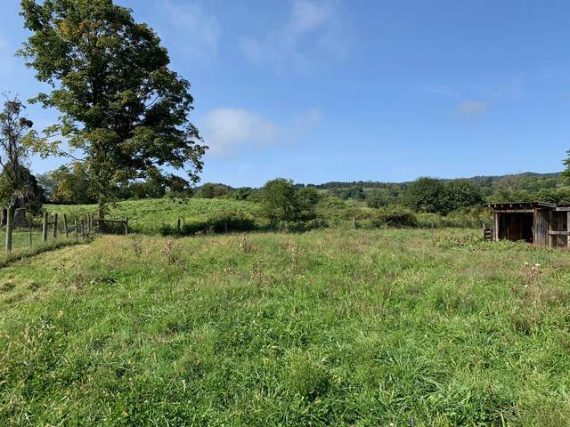 Tract 1 Rt 219, RENICK, WV 24966 (MLS #20-1457) :: Greenbrier Real Estate Service